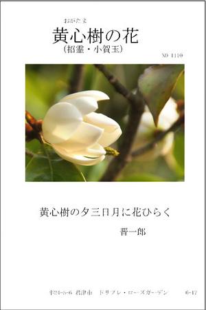 1110-黄心樹の花a.jpg