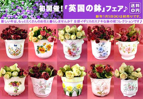 16-1-5hachi-.jpg