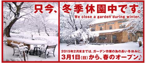 2014--15-winter.jpg