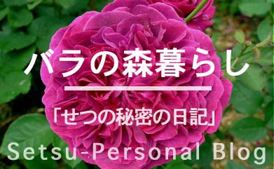 バラの森暮らし.jpg