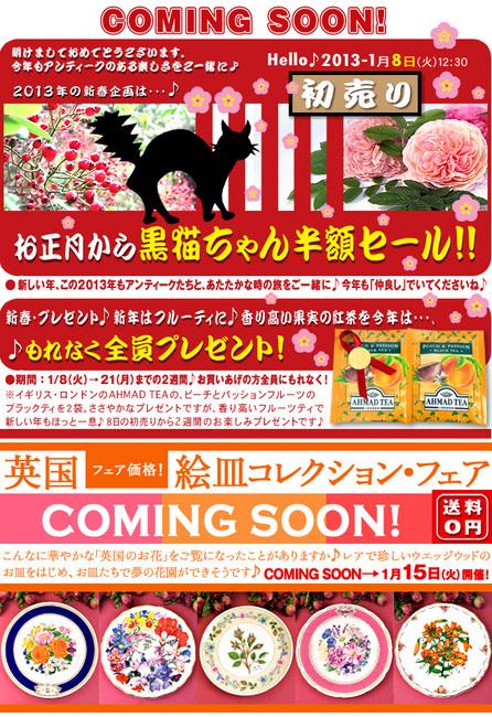 初売り+絵皿CS13-1-8.jpg