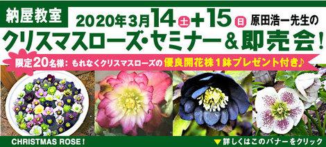 原田さん2020.jpg