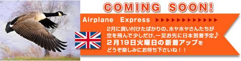 空輸便!_レイヤー=2013-1.jpg