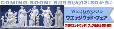 WWFF-CS-20-6.jpg
