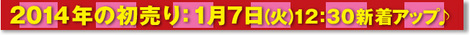 _2014年初売り.jpg